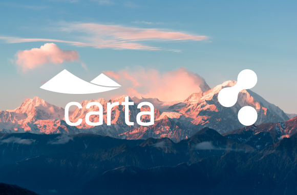 Carta: Package Management Made Easy